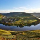 Tage der offenen Weinkeller in Traben-Trarbach und Wolf